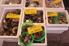 Fresh shellfish for sale