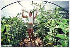 Belles plantes (martoulette) Tags: tomates sista copine serre follette jardinire frangine poucesverts