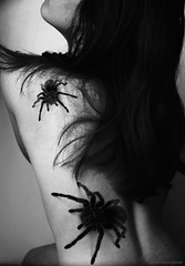 Araneae - selfportrait (Sarah Vn) Tags: school friends portrait bw hairy woman white selfportrait black me girl animal animals sarah self project ego dark hair naked lens photography death spider back women worship darkness spiders sony alterego tarantula belgian concept conceptual occult tamron alter 19 obscure a77 araneae arachnofobia