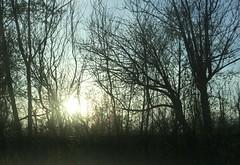 Sunset (opal c) Tags: photostream