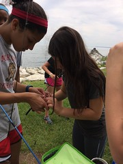 Baiting the hooks (KFiabane) Tags: annapolis sandypoint njhs