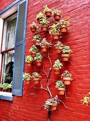 Tree Shaped Planter (irecyclart) Tags: urban tree pots urbangarden planter verticalgarden