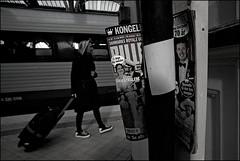 Copenhagen_SAS_7126 (whatStefanSees) Tags: street city blackandwhite bw train copenhagen denmark town nikon gare noiretblanc capital hauptstadt gimp railway zug bahnhof streetlife wideangle nb tokina railwaystation trainstation stadt pro sw 35 schwarzweiss dnemark danmark kopenhagen atx weitwinkel 17mm d610 aspherical grandangle geeqie darktable