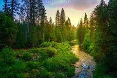 Morning in Yosemite (dannygreyton) Tags: california trees usa nature water river nationalpark yosemite