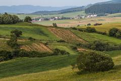 sklizen (spikeROCK) Tags: summer canon country na slovensko slovakia minimalism sr leto vilage svk dedina dedine vanovka hrustinaokolie hrustn