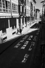 (N. Feans) Tags: leica santiago macro film minolta kodak tmax sony scan galicia galiza 400 compostela 28 fe 90 cl a7 rokkor