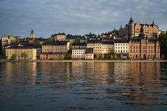 Evening light (Helena Normark) Tags: sweden stockholm sverige a7 voigtlnder sder voigtlanderultron35mmf17 ultron35mmf17 sonyalpha7
