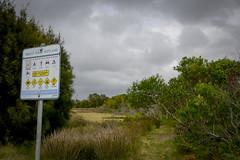 Orient Point Wetland (Visit Shoalhaven) Tags: nature point wildlife adventure explore orient wetland shoalhaven unspoilt