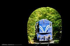 ALCO at Bralos tunel (Nikos Kantiris (www.RailScapes.Net)) Tags: tree loco greece locomotive tunel alco ose   a326 bralos     kantiris