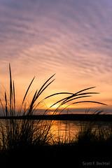 Sand Point Beach Sunset (2016-06-17 1633) (bechtelsf) Tags: sunset sky beach grass silhouette landscape nikon michigan upperpeninsula d810 sandpointbeach nikon2470mm28