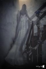 Presence (TsukiUsagi Photo) Tags: wedding woman sabrina castle girl night dark photo donna dress darkness ghost blonde presence tsuki castello fantasma notte usagi sposa ragazza buio valentina scuro bionda oscurit vestito spirito presenza vogogna baldin generelli