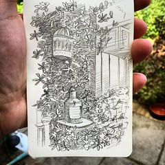 Draw! (Jeroenc71) Tags: flowers flower art nature pencil garden sketch backyard drawing sketching passion booklet draw moleskin