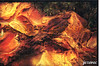 2007-01-07 [644] Taiwan - Nanya Rocks (Badger 23 / jezevec) Tags: roc rocks taiwan geology formosa 台灣 kina 臺灣 loan nanya geological geologi geologie 中華民國 republicofchina yeliou 섬 géologie geología 湾 republikken 地質 福爾摩沙 地质 tajwan تايوان tchajwan đài 타이완 jarðfræði тайвань геология ταϊβάν republikchina thòivàn טייוואן taivāna taívan தாய்வான் تەيۋەن גאולוגיה newtaipeicity جيولوجيا geolaíocht 地質学 지질학 địachất ভূবিদ্যা भूविज्ञान