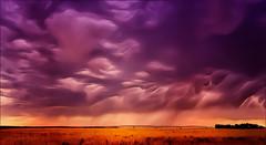 Clouds #152