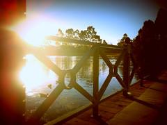 HFF Double Sunflare Edition (Alana Molloy) Tags: sunlight lake reflection water fence nokia n8 sunflare hff phonephotography cameraphonephotography nokian8 doublesunflare fencefriday happyfencefriday alanamolloy