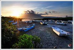 20120715_5671b_ (Redhat/) Tags: sunrise taiwan mangrove redhat gettyimages