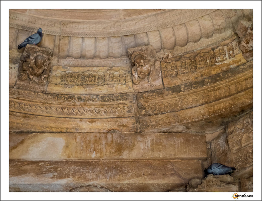 Pigeons on carved ledges looking down