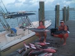 100_2025 (Hollingsworth18) Tags: gulfofmexico fishing pursuit wahoo redsnapper pelagic saltwaterfishing gaggrouper bluewaterfishing pursuitboats
