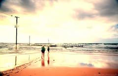 Some day (John JHL Photography) Tags: winter seascape beach swimming swim sunrise john day sydney some mona vale memory nsw jhl reminisce