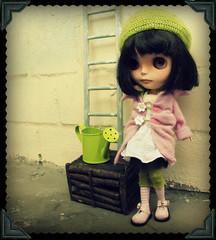 pink@green