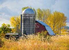 Palouse Autumn Barn (Ryan McGinty) Tags: autumn fall landscape farm moscow silo idaho redbarn palouse goldencottonwood latahcounty ryanmcginty