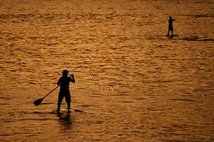 Stand up paddle (adelaidephotos) Tags: autumn sunset sea brazil sun fall sol praia beach rio brasil riodejaneiro mar dusk pôrdosol sup outono paddlesurf arpoador entardecer standuppaddle mariaadelaidesilva