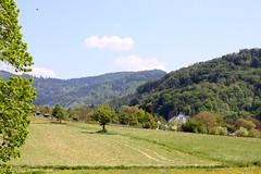Gundelfingen landscape I (tillwe) Tags: green landscape spring blackforest tillwe rebberg gundelfingen 201605