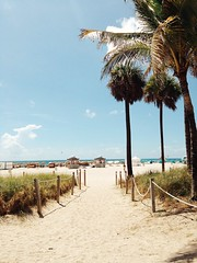 Beach entrance (chloejadeyoung) Tags: travel family trees sea summer vacation sky usa sun holiday hot green beach nature water america outdoors photography student sand warm break florida miami branches sunny palm huts walkway abroad heat tropical miamibeach humid 2015