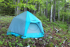 My Accommodation (view2share) Tags: morning travel camping camp up mi outdoors spring outdoor michigan may tent upperpeninsula eureka equinox springtime uppermichigan 2016 northernmichigan marquettecounty gooselake marquetterange marquetteironrange eurekaequinox may2016 deansauvola may302016