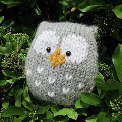 Stuffy Owl (Knitting patterns by Amanda Berry) Tags: nepal amanda bird make birds grey drops berry knitting pattern handmade patterns crafts knit free fluff yarn owl download easy knits knitted making crafting owls fuzz beginner garnstudio knitters owlet ravelry