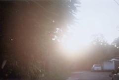 Mourning light. (larissanunesdealbuquerque) Tags: 35mmfilm
