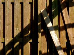 interseces... (bruce grant) Tags: quintal cerca sombras