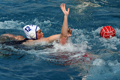 AW3Z0316_R.Varadi_R.Varadi (Robi33) Tags: summer sports water swimming ball fight women action basel swimmingpool watersports waterpolo sportspool waterpolochampionship