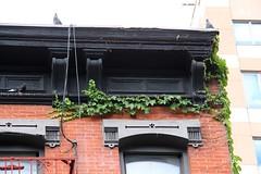 E9thSt (49) (ShellyS) Tags: nyc newyorkcity manhattan eastvillage buildings