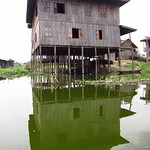 "Stilt House <a style=""margin-left:10px; font-size:0.8em;"" href=""http://www.flickr.com/photos/14315427@N00/6925181042/"" target=""_blank"">@flickr</a>"
