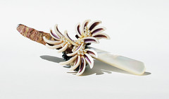 """pearl + peony"" custom made talisman - front (Opal Owl) Tags: vintage knife peony healing tool garnet motherofpearl athame hemmatite"