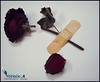 ♥ (RSHooo21) Tags: ورود قلبي رحيق ذبل ذبول اماني تحطم