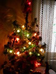 My little Christmas tree (Maenette1) Tags: christmas tree menominee uppermichigan 52weeksofphotographyweek5 flicker365