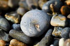 IMG_87233 (Ian-GreenPhotography.com) Tags: sea stone seaside stones norfolk pebbles pebble weybourne northnorfolk weybournebeach