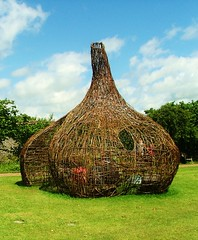 garlic (Mark and Rebecca Ford Art Sculpture) Tags: uk flowers sculpture green art love festival architecture river landscape photography countryside photo pod gallery nest westsussex surrealism wildlife events environmental screen exhibition structure tendril climbing growth galleries willow gourd installation land surrealist form woven climber carpark festivities weaving foundobject weave landart ambiguous chichester testicle westdeangardens edwardjames wovenwillow lavant greenart chichesterfestivities apendage plantform countrycrafts wovenart housenature rebeccaford meditativespaces wovensculpture chichesterarttrail edwardjamesfoundation oraginicform twocirclesdesign arterialcytoplast 24thjune2012 riverhopeproject