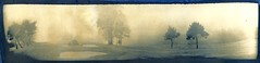 Fog (efo) Tags: bw home cyanotype gumbichromate alternativeprocess bichrome homemadecamera altprocess mysteriouscamera swinglenspanoramic efo:site=2