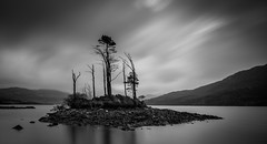 Island (Boyd Hunt) Tags: scotland highlands sutherland assynt trees loch water rocks isolated clouds sky bw mono canon uk longexposure hills wild