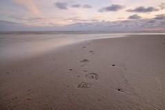 A walk into... DSC_2794 (Wiljo van Essen) Tags: longexposure sunset sea holland beach water clouds strand zonsondergang nikon thenetherlands noordzee wolken zee northsea voetstappen schoorl geotagging d90 voetafdrukken nd110 nikond90 1116mm tokina1116mm bwnd110filter