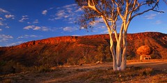 West Macs Ranges (Mark Wassell) Tags: light red west grave sunrise john gum landscape photography flying alice centre devils ghost royal australia doctor ranges springs service outback marble northern macs flynn territory macdonnell