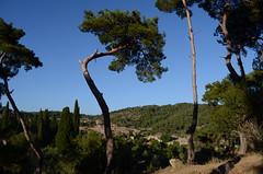Trees on the way to Zeus Altar (-c2k-) Tags: turkey nikon trkiye altar trkei zeus 1855mm nikkor vr afs dx f3556g adatepe d5100