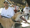 joe_max (GALT Greyhounds) Tags: 2002 events greyhounds galt dogdayafternoon