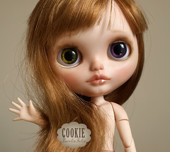 Cookie is born.