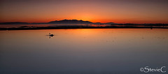 Swan Song (StevieC-Photography) Tags: sunset island scotland tranquility goldenhour swansong steviec glowinsky