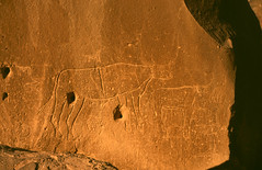 rock carvings in enneri gonoa (michael_jeddah) Tags: sahara desert chad wste stoneage rockcarving steinzeit tibesti felsgravur