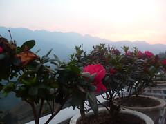 Vue de Sapa - mars 2016 (Manon Adville) Tags: sunset vietnam sapa voyages manonadville